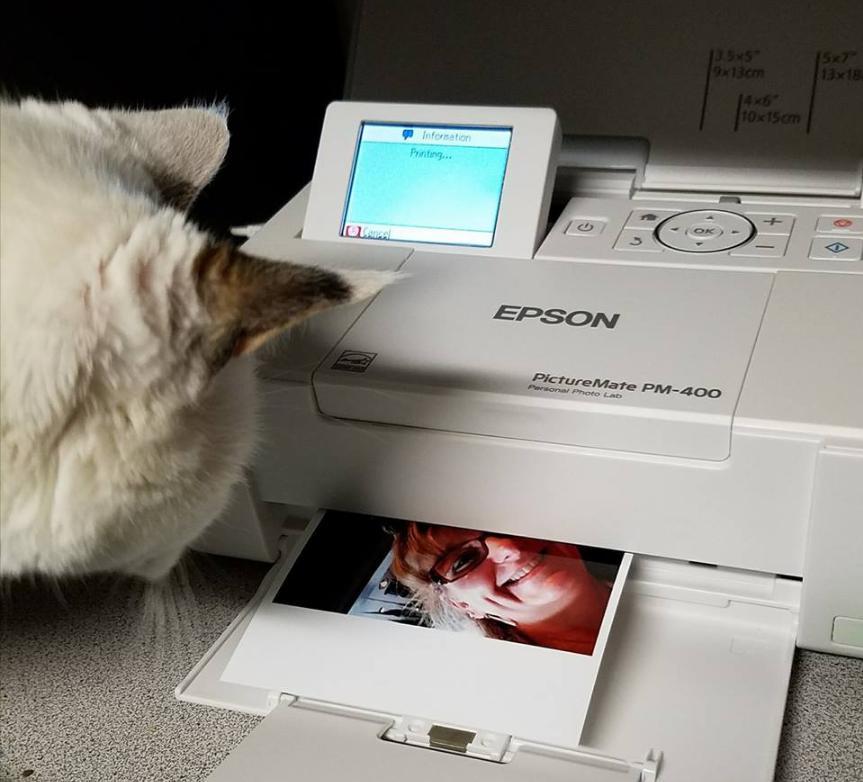 Máy in ảnh chuyên nghiệp Epson PictureMate PM-400